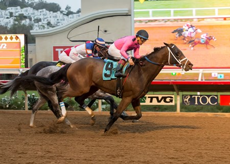 Solid Wager and jockey Victor Espinoza, right, outleg Grazen Sky (Tyler Baze), inside, to win the $100,000 Cary Grant Stakes, Sunday, November 20, 2016 at Del Mar Thoroughbred Club, Del Mar CA.