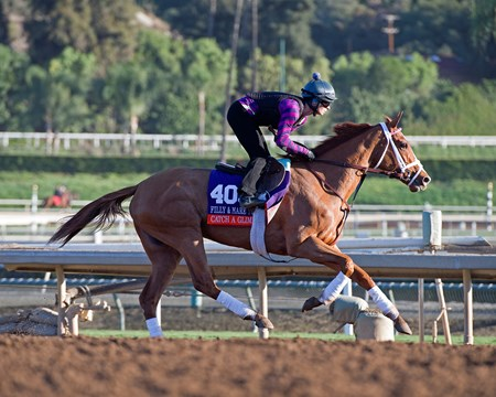 Catch a Glimpse Morning scenes at Santa Anita in preparation for 2016 Breeders' Cup on Nov. 3, 2016, in Arcadia, CA.