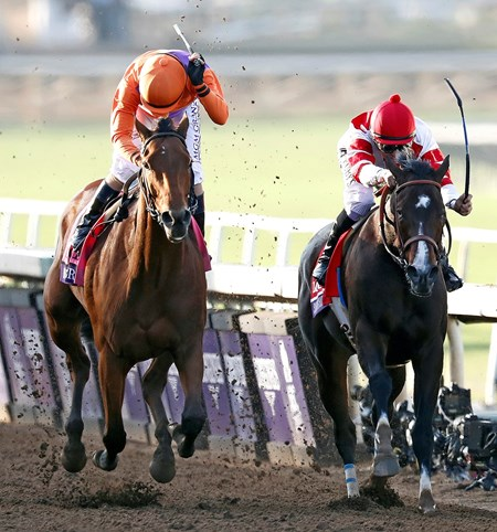 Beholder (L), Gary Stevens up, holds off Songbird and Mike Smith, to win the Gr.1 Breeders' Cup Distaff.