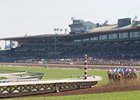 A field of turf horses cross the dirt track Santa Anita Park