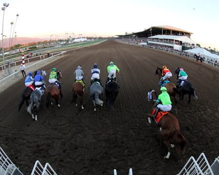 The horses just after the start of the Breeders' Cup Classic at Santa Anita on November 5, 2016.