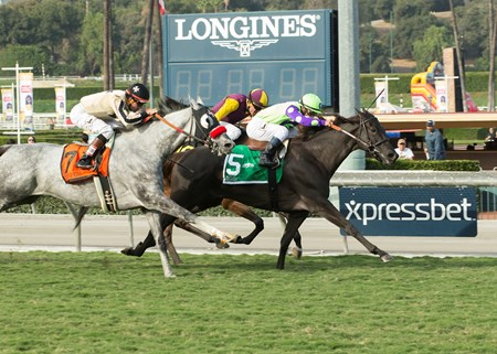 Zindaya and jockey Javier Castellano, right, outleg Tiz a Kiss (Kent Desormeaux), left, and Hillhouse High (Santiago Gonzalez), inside, to win the Grade II, $200,000 Goldikova Stakes, Sunday, November 6, 2016 at Santa Anita Park, Arcadia CA.
