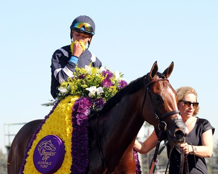 Oscar Performance with Jose Ortiz after winning the Breeders' Cup Juvenile Turf (GI) at Santa Anita on November 4, 2016.