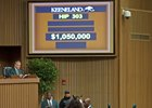 Tapit colt, sold for $1.05 million.