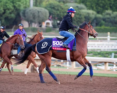 A. P. Indian Morning scenes at Santa Anita in preparation for 2016 Breeders' Cup on Nov. 3, 2016, in Arcadia, CA.