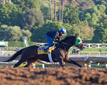 Melatonin with Joe Talamo Morning scenes at Santa Anita in preparation for 2016 Breeders' Cup on Nov. 2, 2016, in Arcadia, CA.