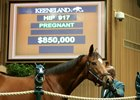 Moment of Majesty brought $850,000 Nov. 11 at Keeneland