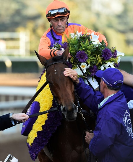 Gary Stevens sits atop Beholder after winning the Breeders' Cup Distaff at Santa Anita Nov. 4, 2016 in Arcadia, California.