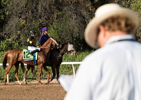 Finest City and Mike Smith walk to the starting gate as starter Jay Slender studies the field in his program before the Breeders' Cup Filly & Mare Sprint at Santa Anita on 11/5/16