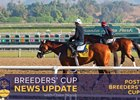 2016 Breeders' Cup Sunday Wrap