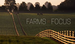 Farms in Focus