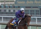 Beholder Set to Bid Farewell