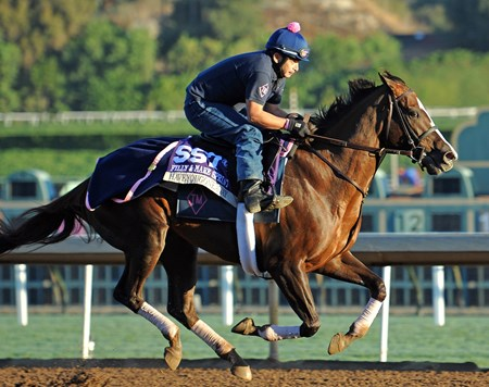 Haveyougoneaway at Santa Anita Tuesday morning.