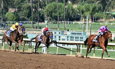 Champagne Room with Mario Gutierrez up wins the 14 Hands Winery Juvenile Fillies
