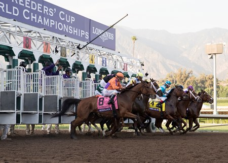 The field leaving the starting gate in the Longines Breeders Cup Distaff at Santa Anita on 11/4/16.