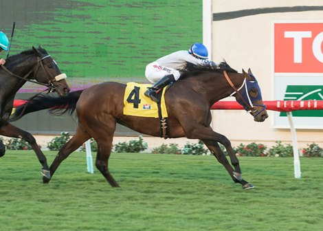 Improving Do The Dance Steps Up In Megahertz Bloodhorse