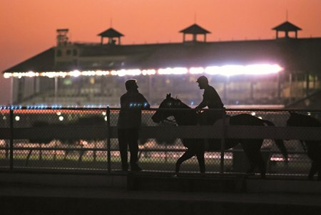 Third Horse Tests Positive For Ehv 1 At Fair Grounds