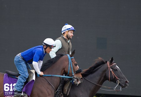 Obviously