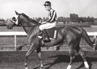 Misty Isle Rolled to Win in 1941 Falls City