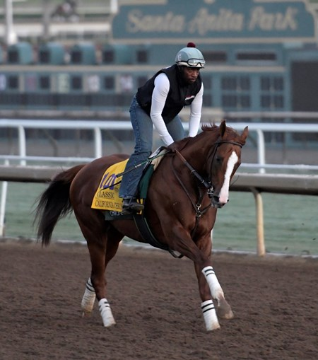 California Chrome gallops at Santa Anita Nov. 2, 2016 in preparation for his appearance in the Breeders' Cup in Arcadia, California.