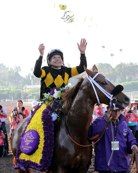 Finest City with Mike Smith after winning the Breeders' Cup Filly & Mare Sprint (GI) at Santa Anita on November 5, 2016.