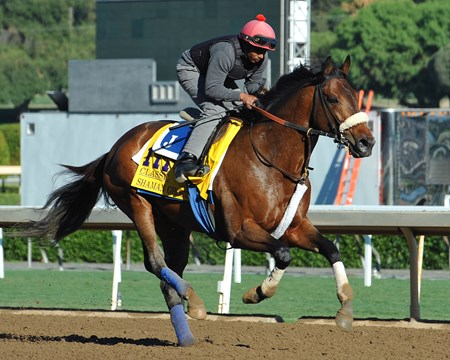 Shaman Ghost at Santa Anita