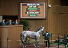 Keeneland's Book 1 Closes on Strong Note