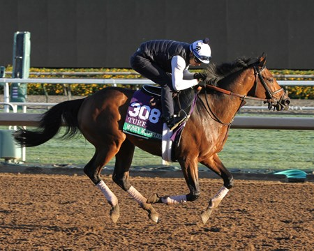Money Multiplier on the track at Santa Anita on November 2, 2016.