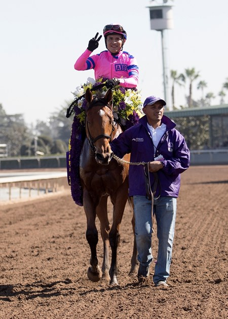 Mario Gutierrez celebrates after winning the 14 Hands Winery Breeders' Cup Juvenile Filles on Champagne Room at Santa Anita on 11/5/16.