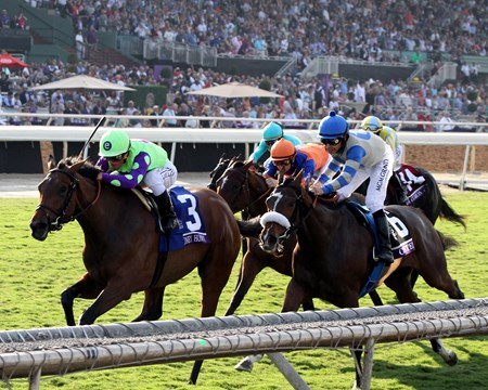 New Money Honey (#3) with Javier Castellano win the Breeders' Cup Juvenile Fillies Turf at Santa Anita on November 4, 2016.