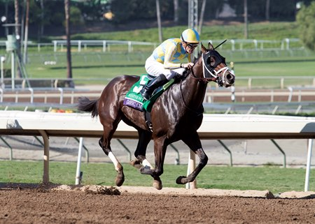 Classic Empire won Breeders' Cup Juvenile earlier this month