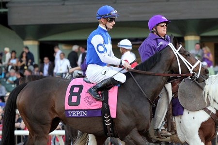 Tepin with Julien Leparoux in the post parade for the Breeders' Cup Mile (GI) at Santa Anita on November 5, 2016.
