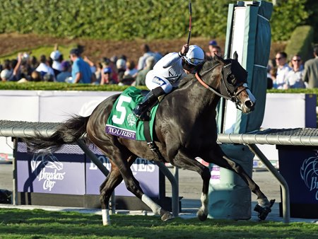 Tourist Upsets Tepin In Breeders Cup Mile Bloodhorse