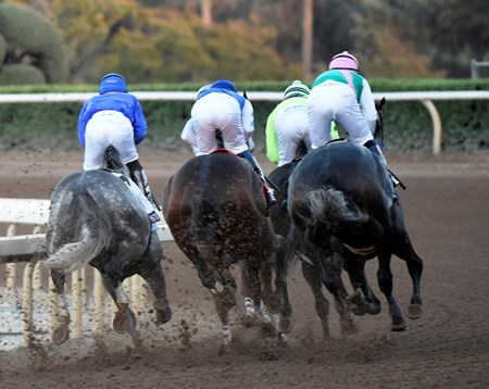 Arrogate on the outside goes in to the first turn on the way to the victory in the Breeders' Cup Classic at Santa Anita Park Nov. 5, 2016 in Arcadia, California.