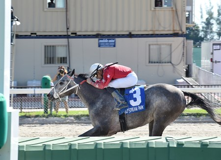 Sweetontheladies wins the 2016 Juvenile Sprint Stakes