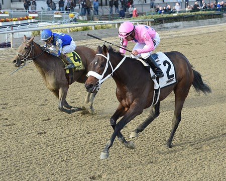 Miss Sky Warrior wins the 2016 Demoiselle
