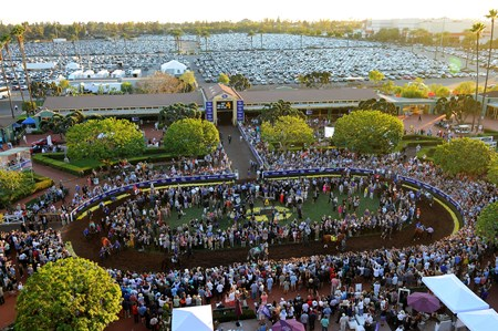 Crowds at the Breeders Cup Classic at Santa Anita, Saturday, November 5, 2016.