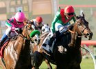 Arles (right) just misses in Red Carpet Handicap to Japanese entrant Nuovo Record