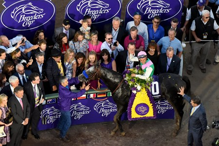 Jockey Mike Smith and Arrogate after winning the Breeders Cup Classic at Santa Anita, Saturday, November 5, 2016.