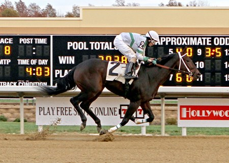 True Cinder - Maiden Win, Mahoning Valley, November 14, 2016 First winner for Alcindor