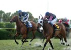 Lubash Awarded Tropical Turf Victory