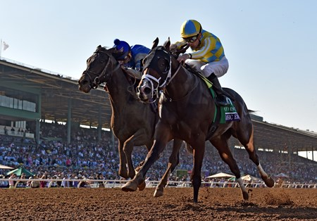 Classic Empire wins the 2016 Breeders' Cup Juvenile