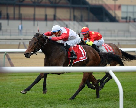 My Impression wins the 2016 WInter Memories Stakes