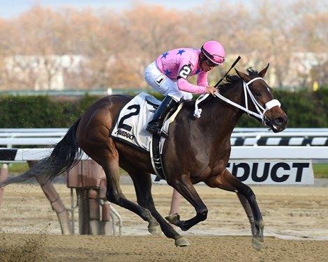 Miss Sky Warrior Holds On In Demoiselle Bloodhorse