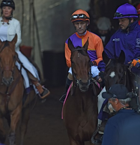 Gary Stevens guides Beholder up the chute to the main track and the win in the Breeders' Cup Distaff at Santa Anita Nov. 4, 2016 in Arcadia, California.