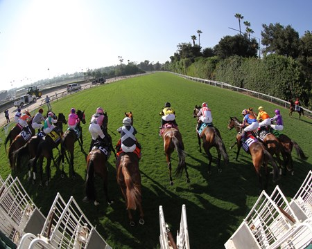 The horses leave the starting gate for the Breeders' Cup Turf (GI) at Santa Anita on November 5, 2016.