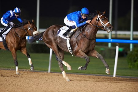 Marking wins the 2016 Al Naboodah National Plant Trophy Handicap.