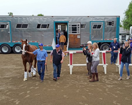 California Chrome arrives at Santa Anita.