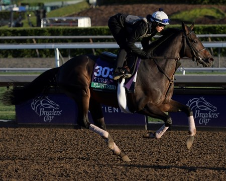 Flintshire out for a gallop at Santa Anita Nov. 3, 2016 in preparation for her appearance in the Breeders' Cup in Arcadia, California.