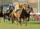 Texas Ryano Kicks Clear in Hollywood Turf Cup